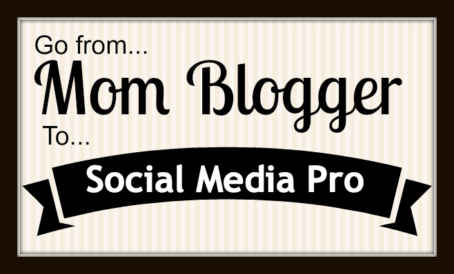 Mom Blogger to Social Media Professional eCourse sidebanner
